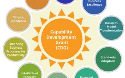 The Capability Development Grant (CDG)
